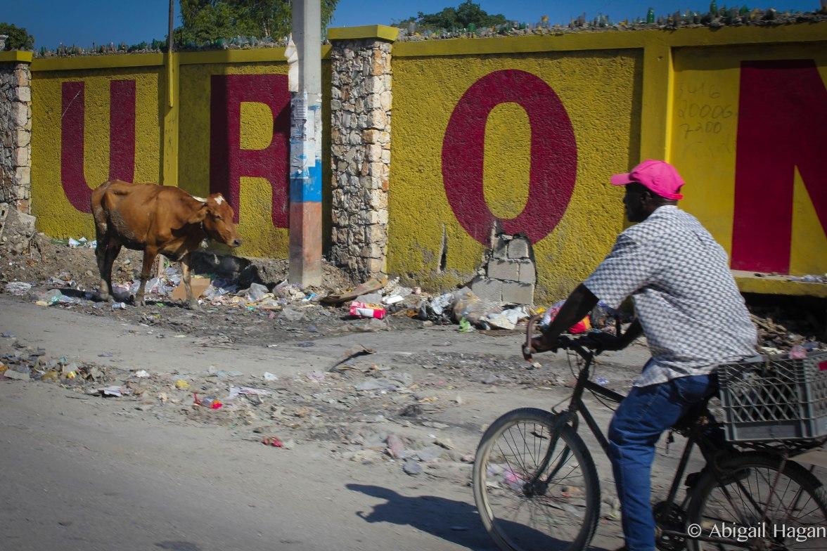 Haiti-57